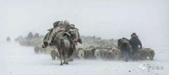 【蒙古影像】带你了解蒙古人的游牧生活 第4张 【蒙古影像】带你了解蒙古人的游牧生活 蒙古文化