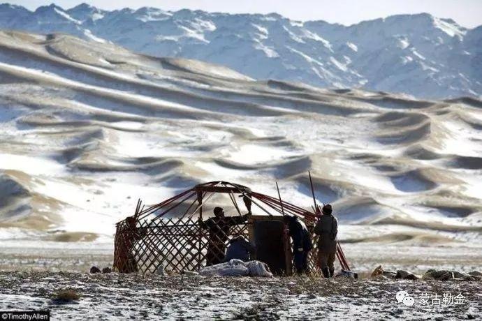 【蒙古影像】带你了解蒙古人的游牧生活 第11张 【蒙古影像】带你了解蒙古人的游牧生活 蒙古文化