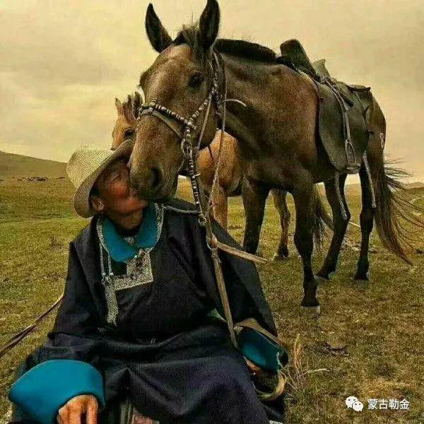 【蒙古影像】带你了解蒙古人的游牧生活 第14张 【蒙古影像】带你了解蒙古人的游牧生活 蒙古文化