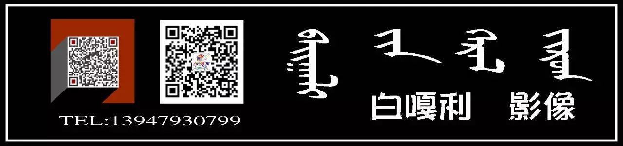 图什业图蒙古刺绣 第17张 图什业图蒙古刺绣 蒙古服饰
