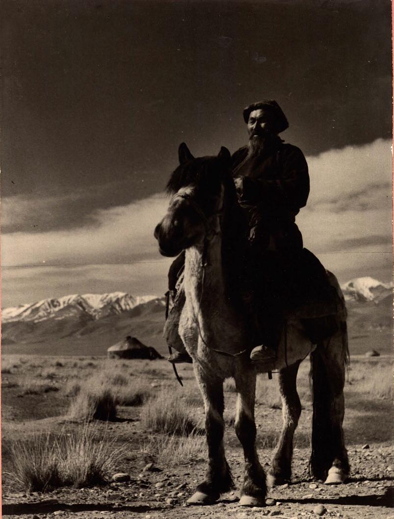 蒙古帝国的尾声:阿尔泰共和国 第7张
