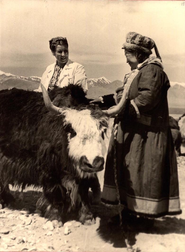 蒙古帝国的尾声:阿尔泰共和国 第13张