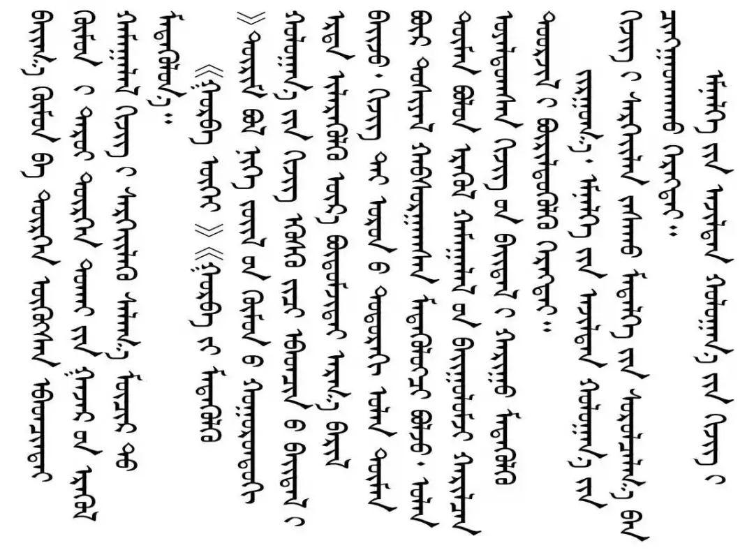 鼠疫防控小贴士(蒙文版) 第13张 鼠疫防控小贴士(蒙文版) 蒙古文库