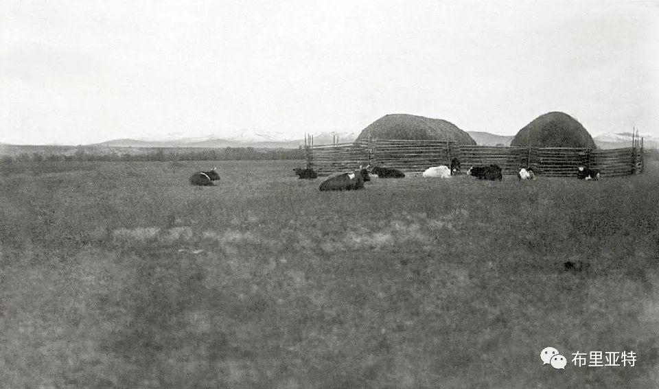 布里亚特蒙古人迁入呼伦贝尔始末 第2张 布里亚特蒙古人迁入呼伦贝尔始末 蒙古文化