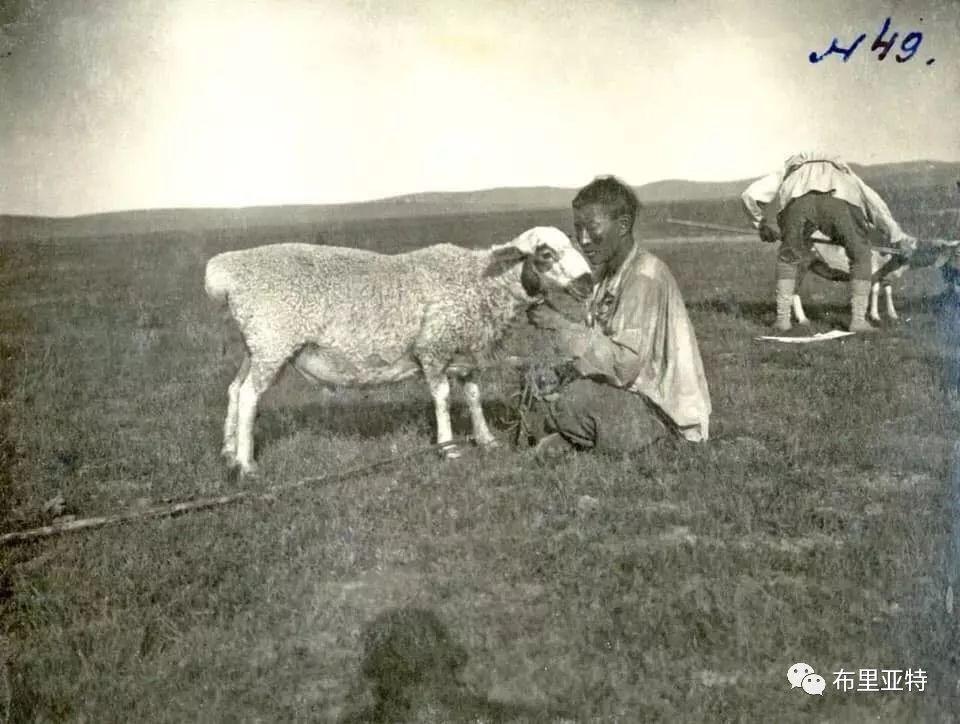 布里亚特蒙古人迁入呼伦贝尔始末 第7张 布里亚特蒙古人迁入呼伦贝尔始末 蒙古文化