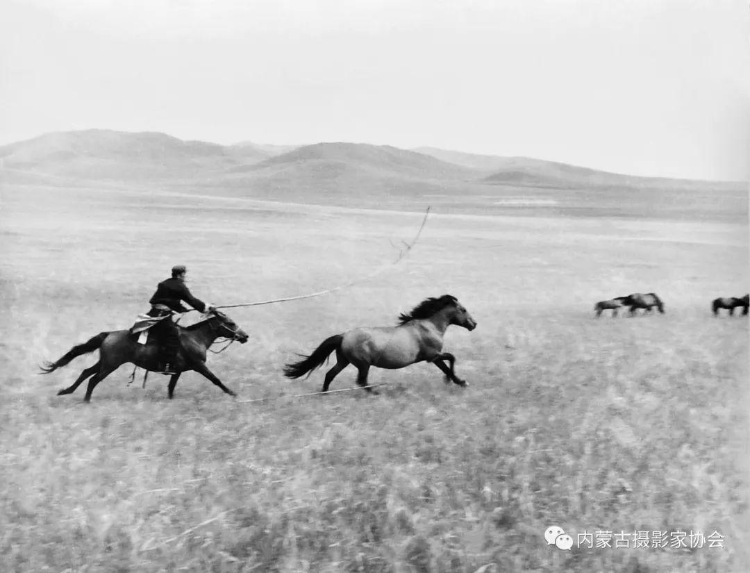 作品赏析丨内蒙古老摄影家岳枫镜头下的精彩瞬间 第5张 作品赏析丨内蒙古老摄影家岳枫镜头下的精彩瞬间 蒙古文化