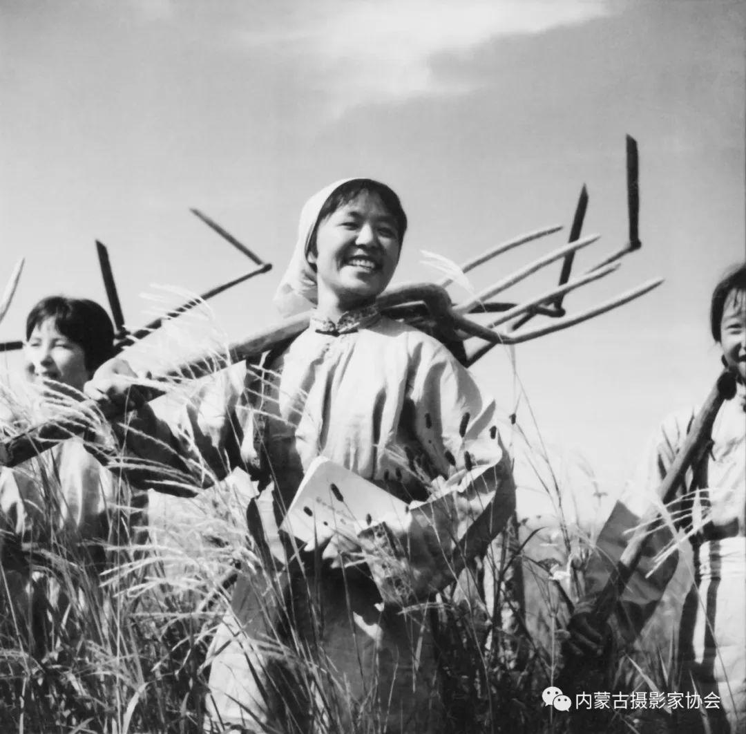 作品赏析丨内蒙古老摄影家岳枫镜头下的精彩瞬间 第12张 作品赏析丨内蒙古老摄影家岳枫镜头下的精彩瞬间 蒙古文化