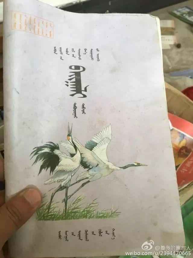 80后90初的蒙古青年、你们还记得吗? 第14张 80后90初的蒙古青年、你们还记得吗? 蒙古文化