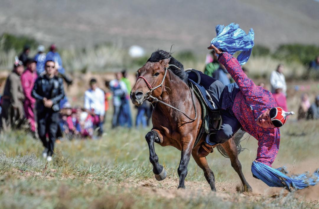 蒙古马摄影作品欣赏 第3张 蒙古马摄影作品欣赏 蒙古文化