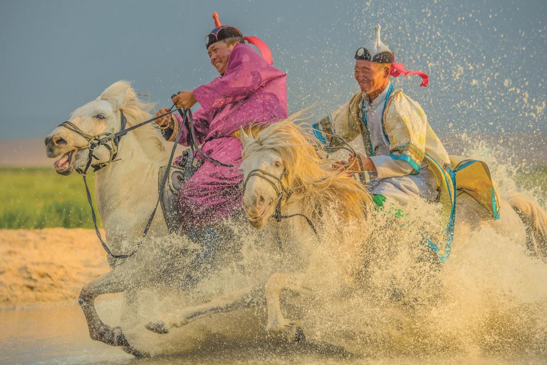 蒙古马摄影作品欣赏 第7张 蒙古马摄影作品欣赏 蒙古文化