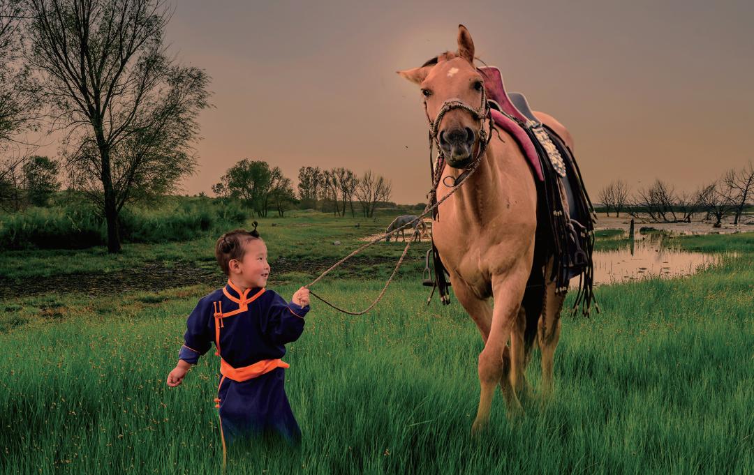 蒙古马摄影作品欣赏 第6张 蒙古马摄影作品欣赏 蒙古文化