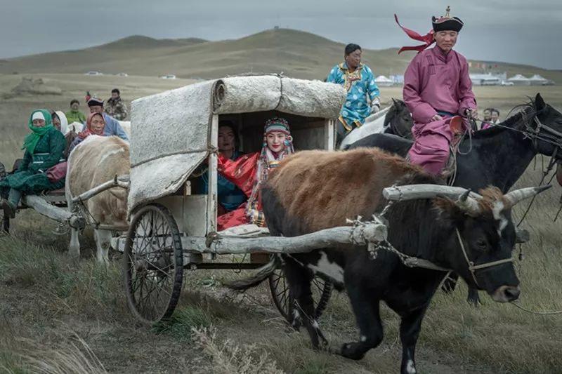 蒙族婚礼 第5张 蒙族婚礼 蒙古文化