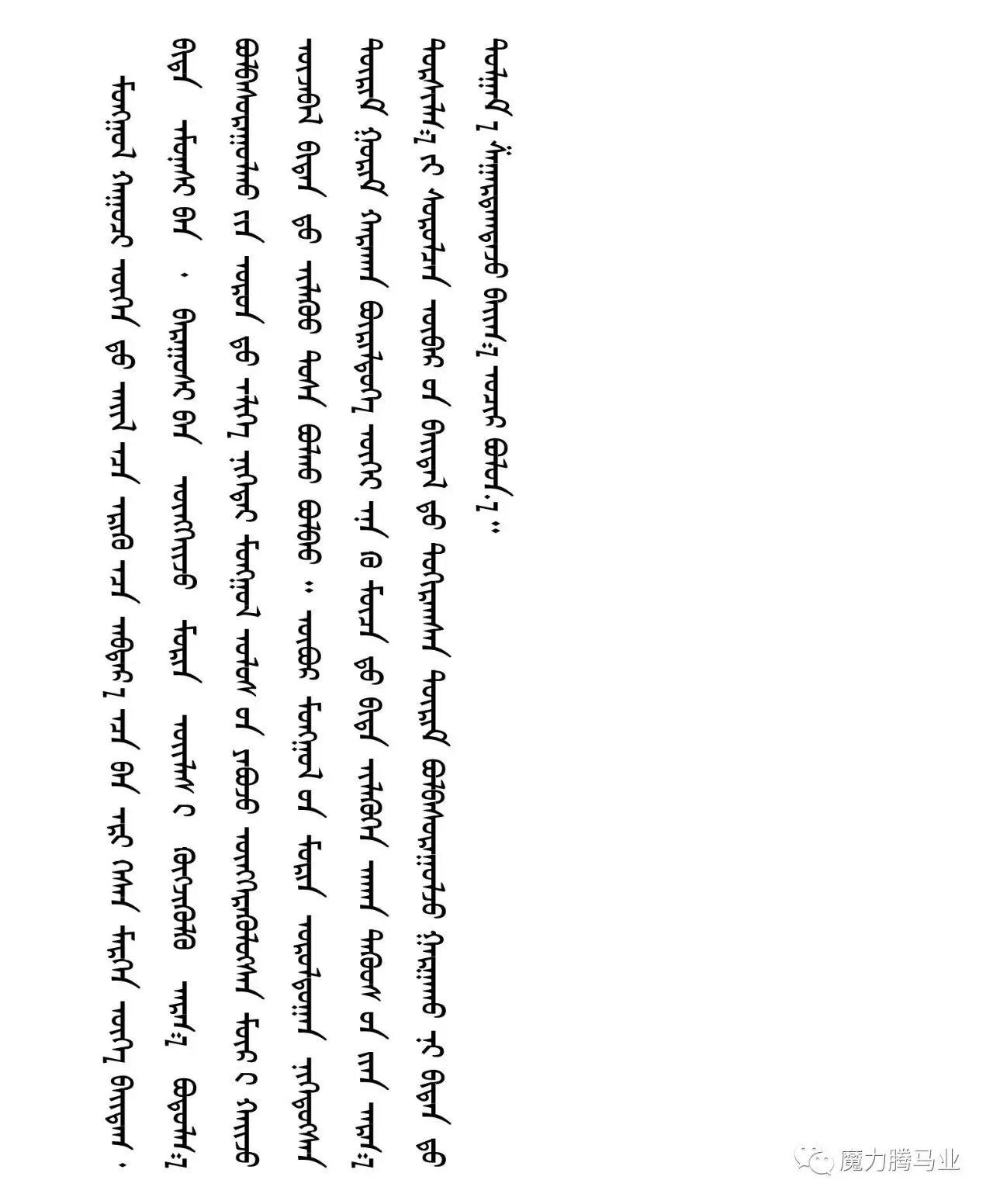 蒙古国赛马章程介绍 第5张