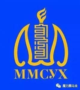 蒙古国赛马章程介绍 第7张