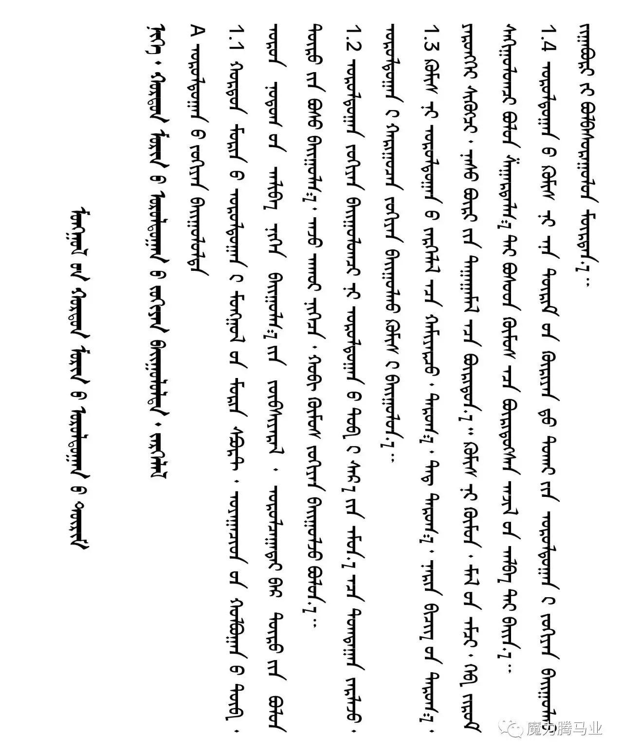 蒙古国赛马章程介绍 第9张