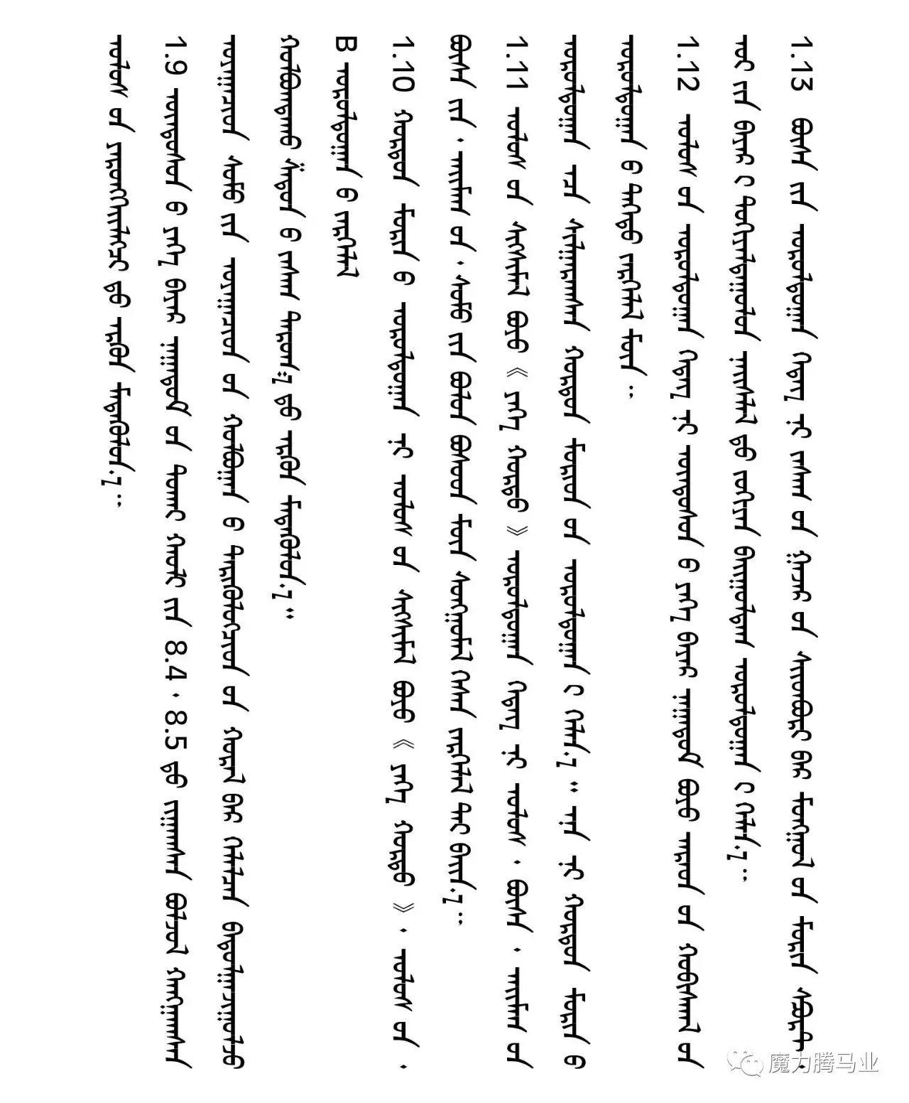 蒙古国赛马章程介绍 第13张
