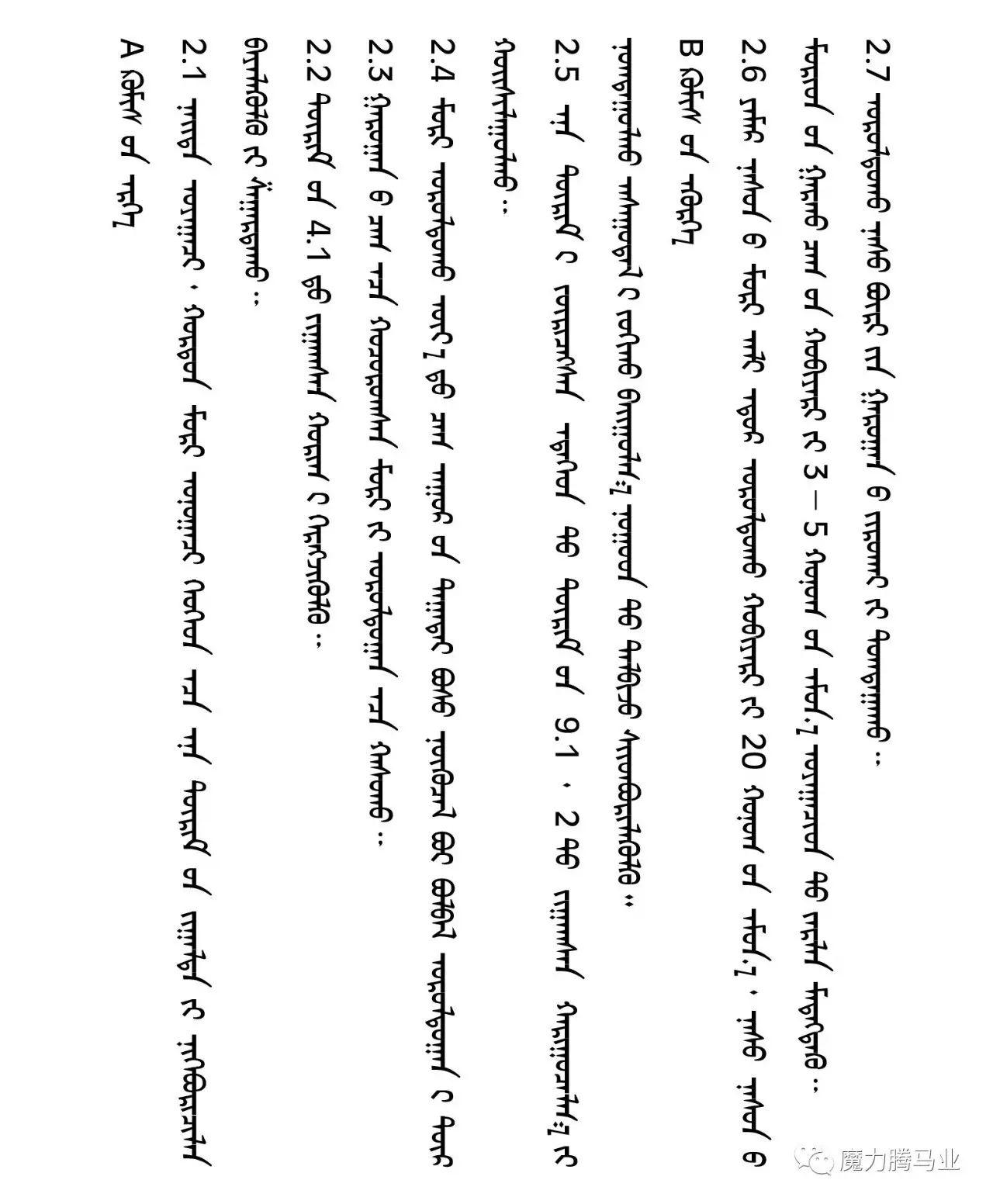 蒙古国赛马章程介绍 第17张