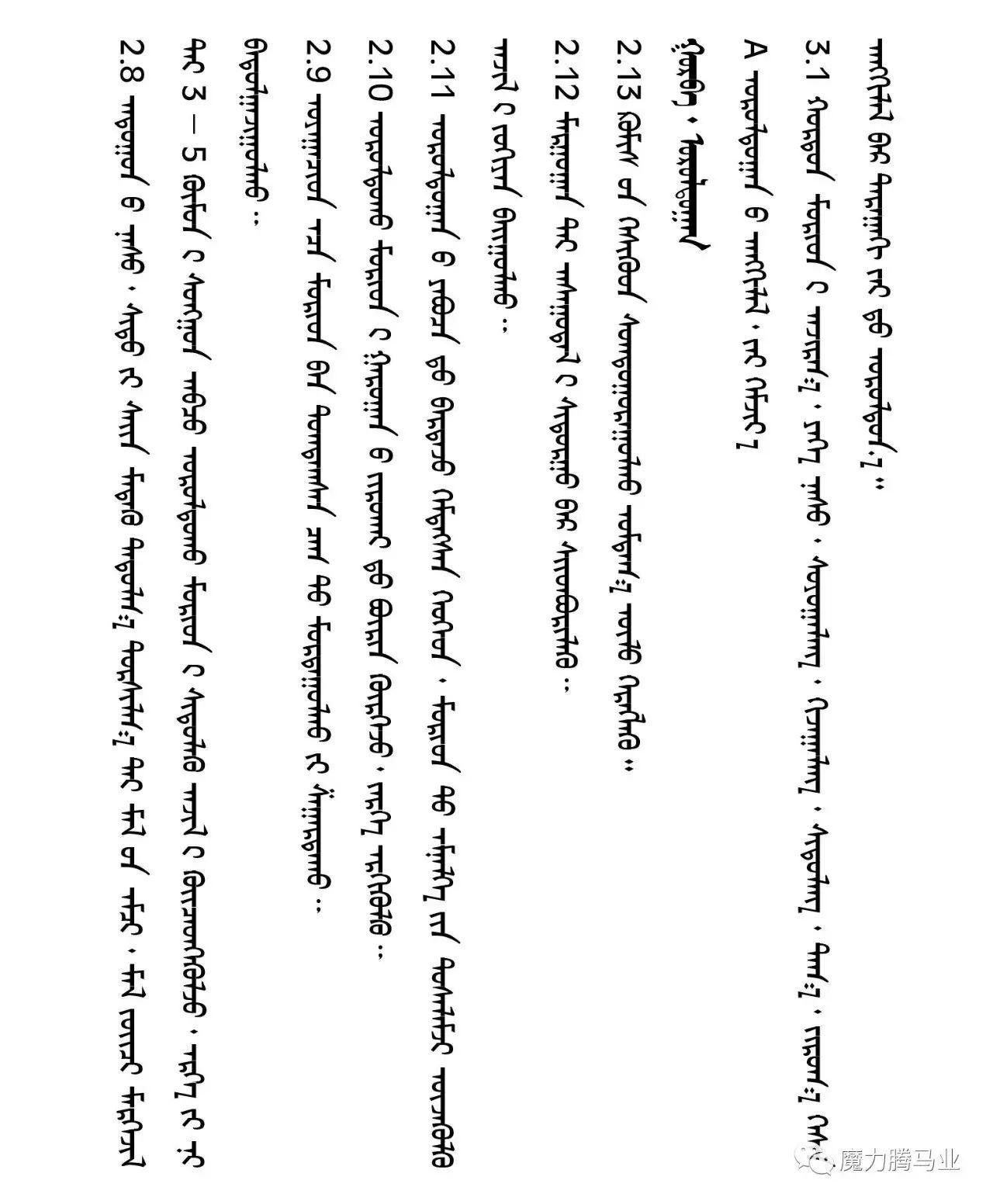 蒙古国赛马章程介绍 第19张