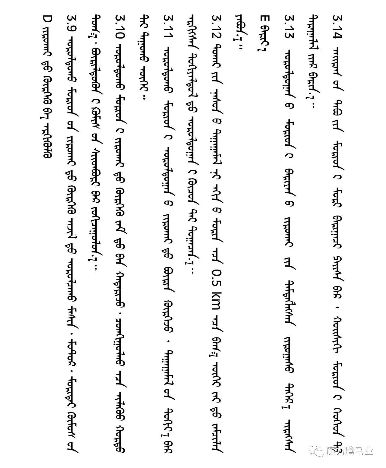 蒙古国赛马章程介绍 第25张