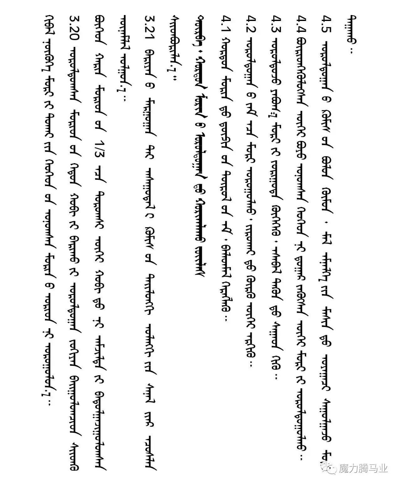 蒙古国赛马章程介绍 第29张