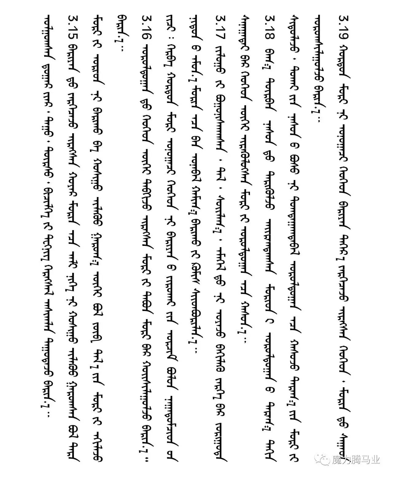 蒙古国赛马章程介绍 第27张