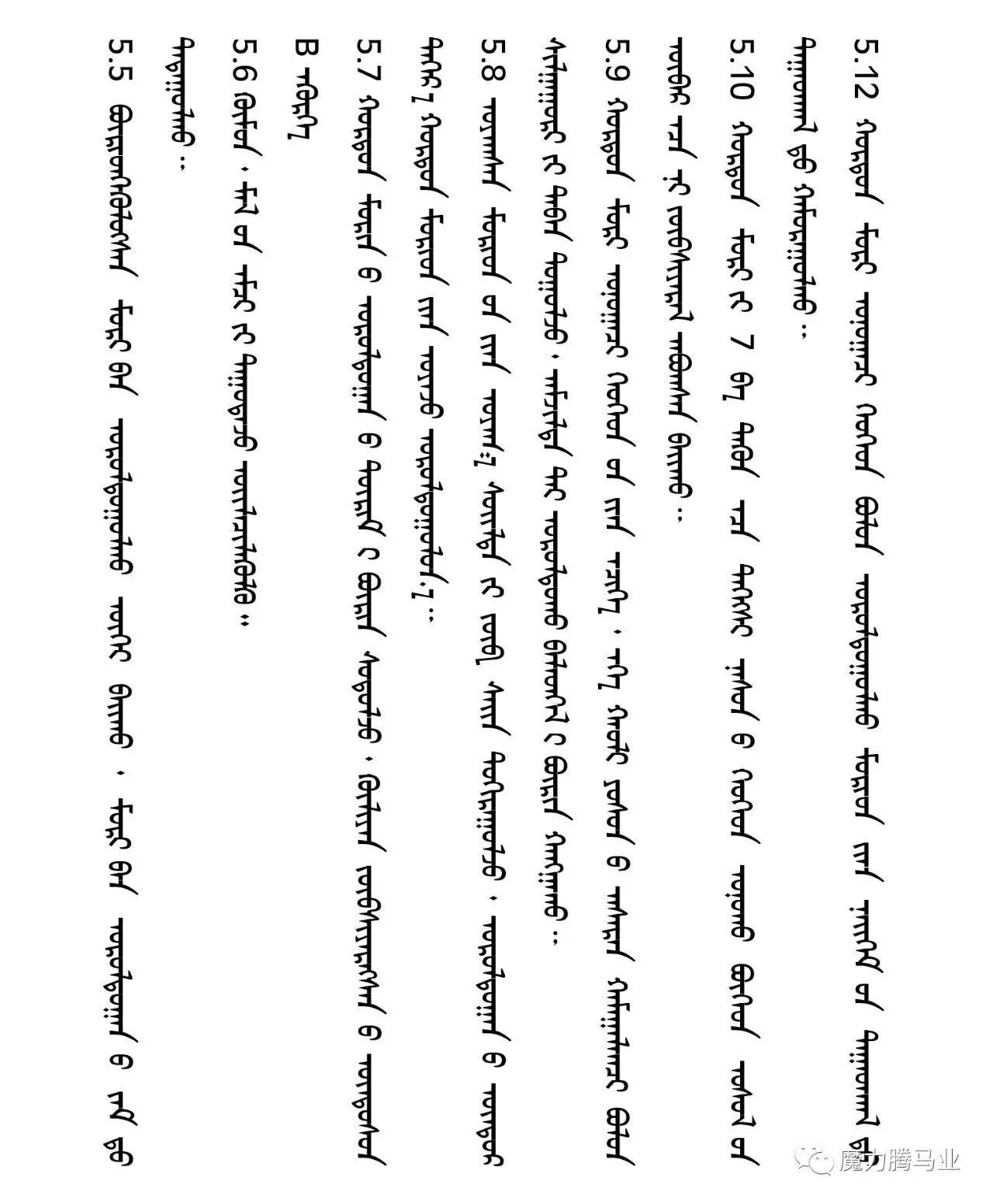 蒙古国赛马章程介绍 第33张