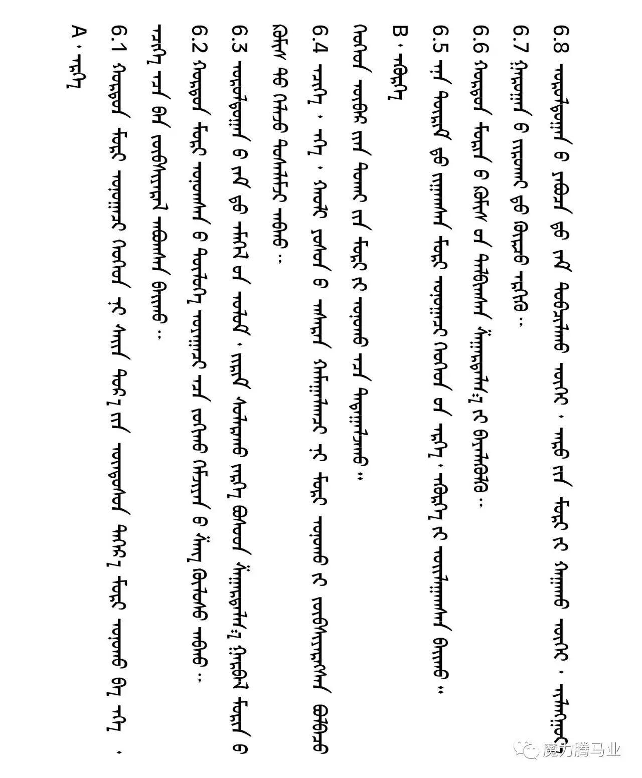 蒙古国赛马章程介绍 第37张