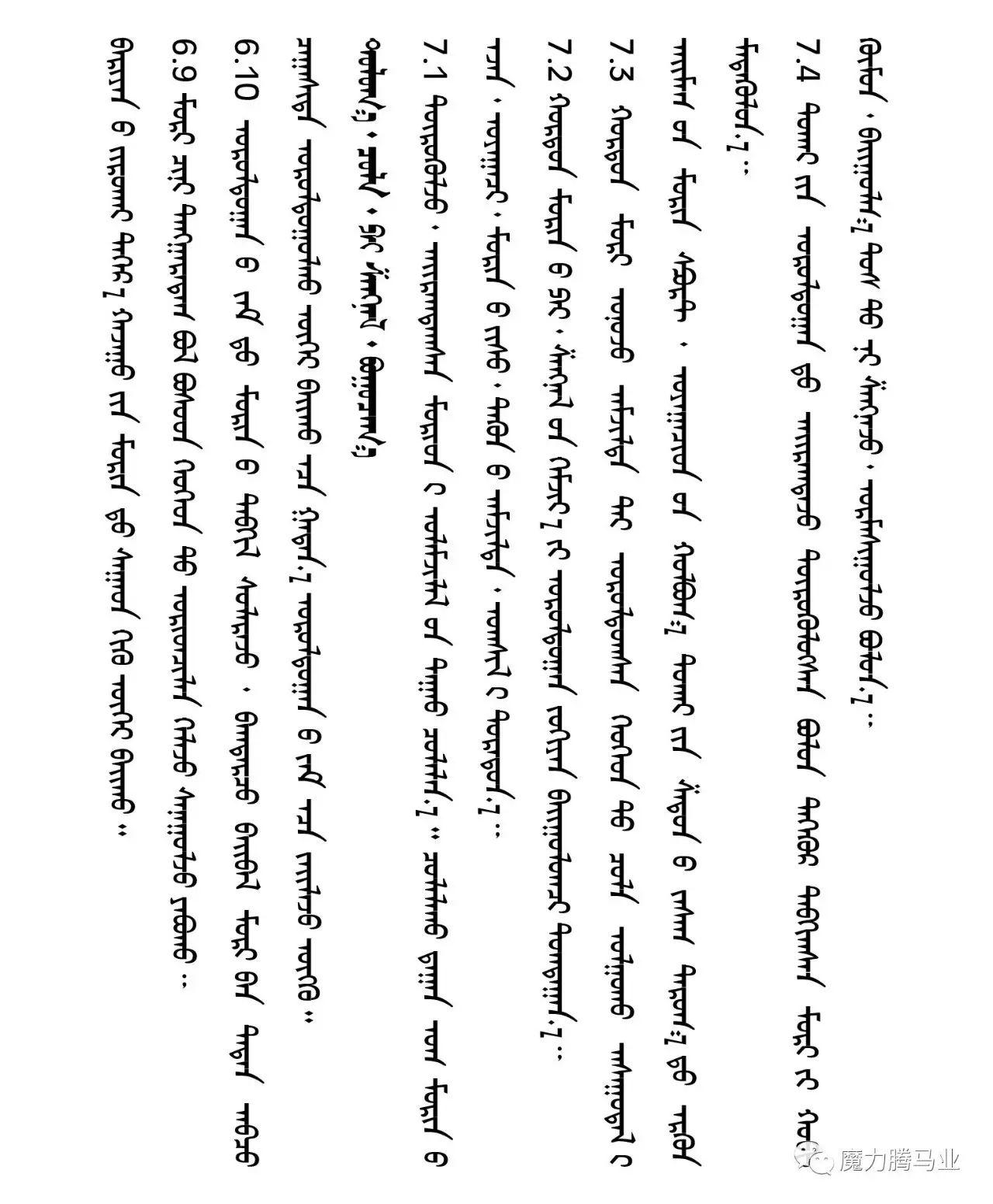 蒙古国赛马章程介绍 第39张