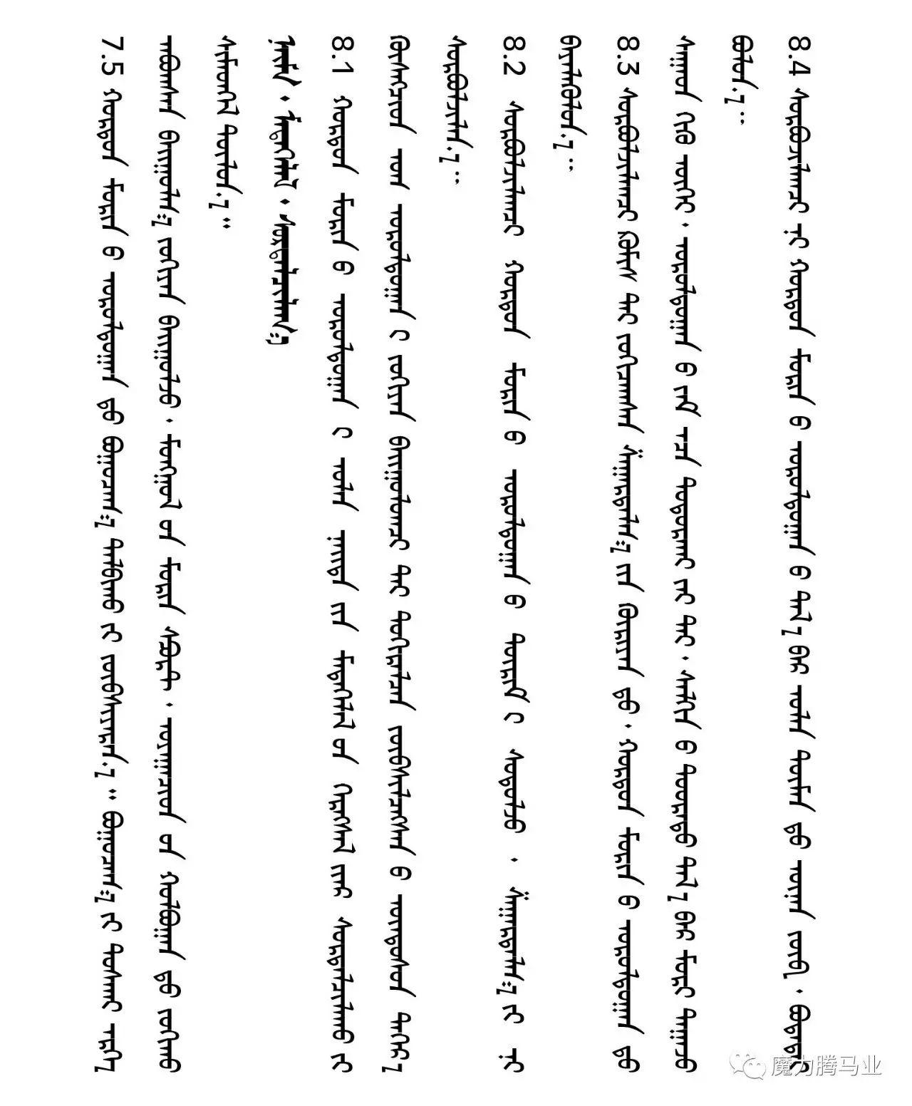 蒙古国赛马章程介绍 第41张