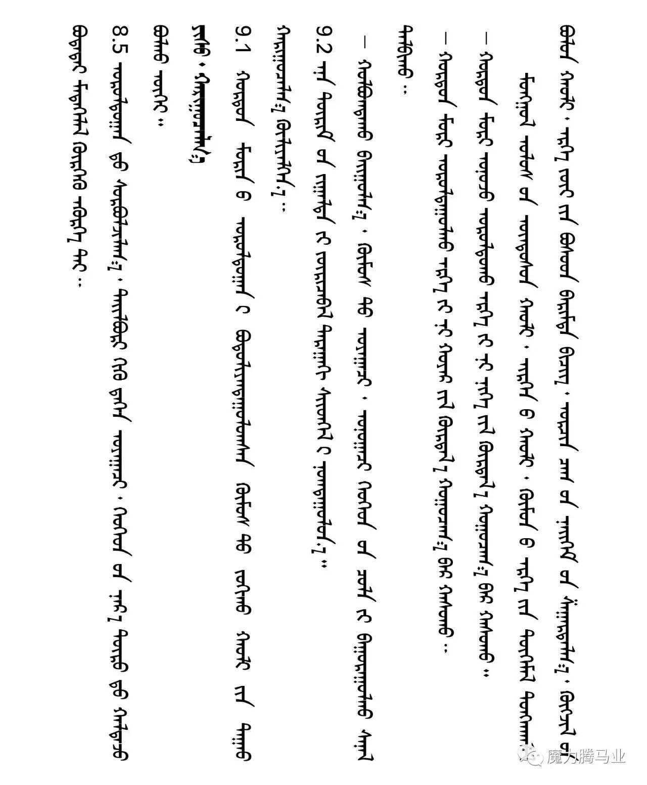蒙古国赛马章程介绍 第43张