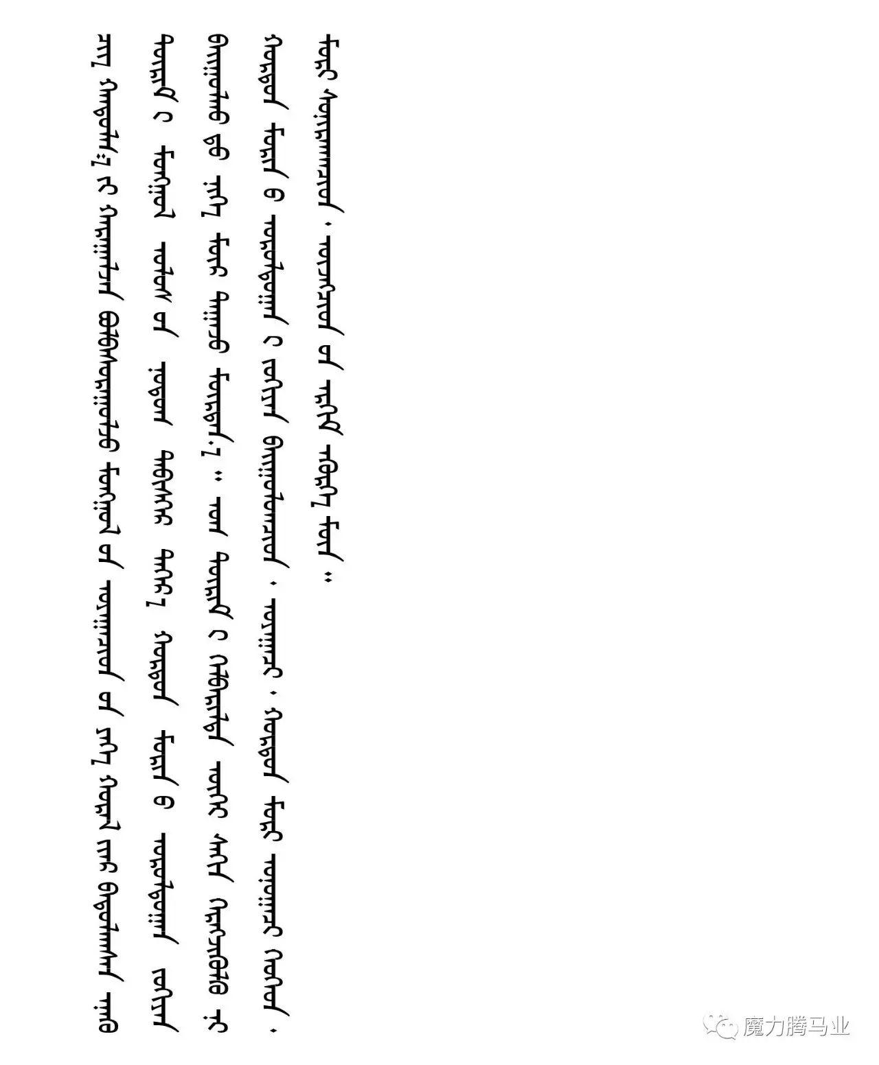 蒙古国赛马章程介绍 第45张