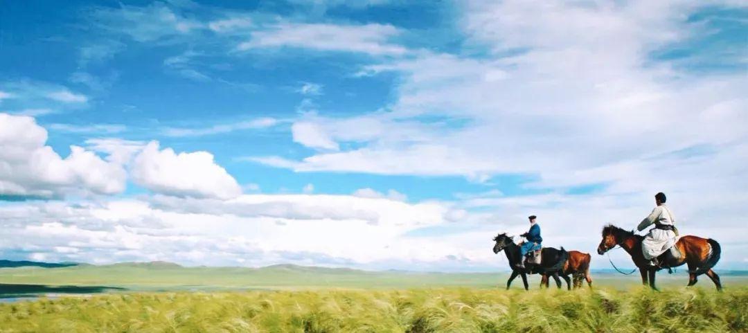 60部蒙古电影 部部都值得看