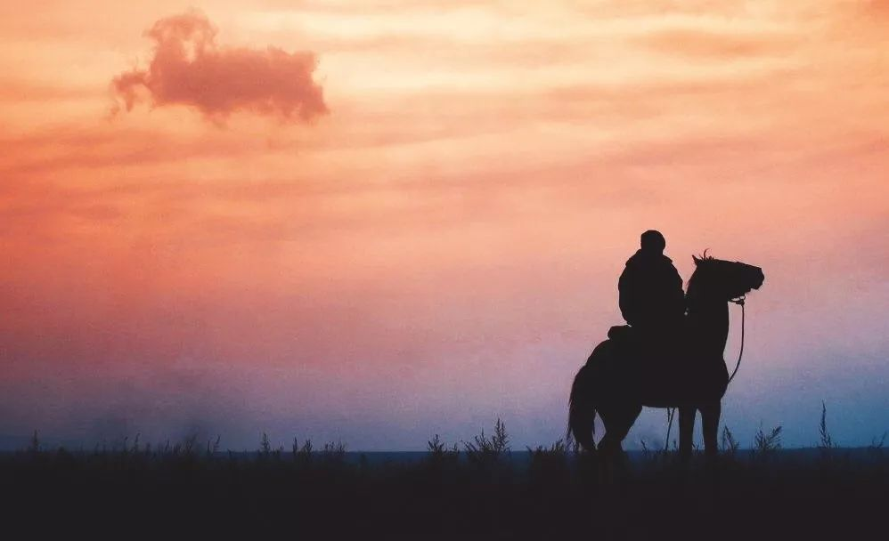 60部蒙古电影 部部都值得看 第3张