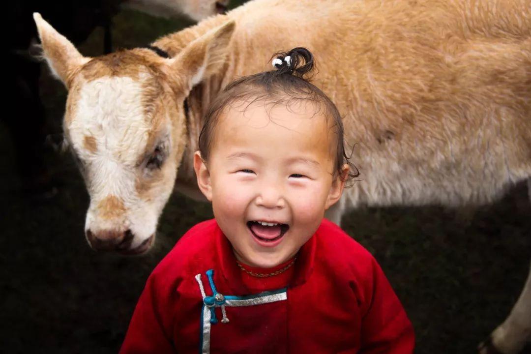 60部蒙古电影 部部都值得看 第4张