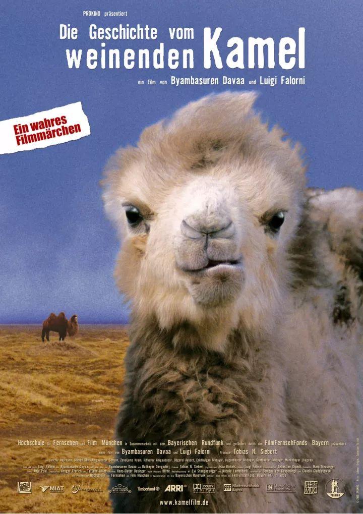 60部蒙古电影 部部都值得看 第122张