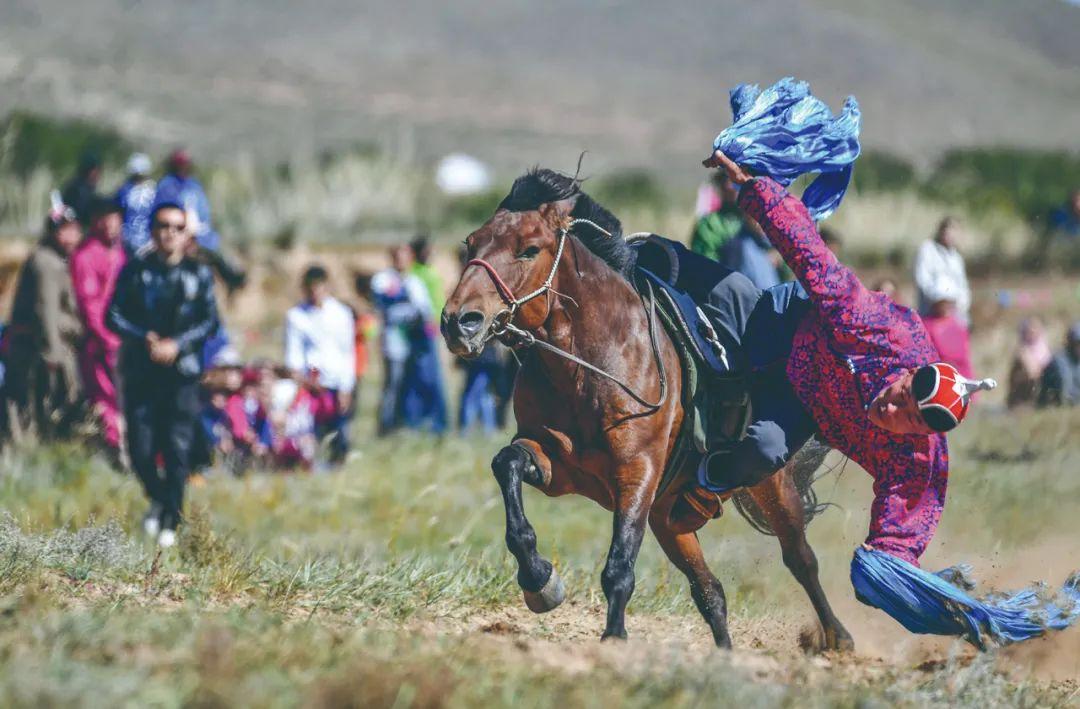 蒙古马神采 第3张 蒙古马神采 蒙古文化