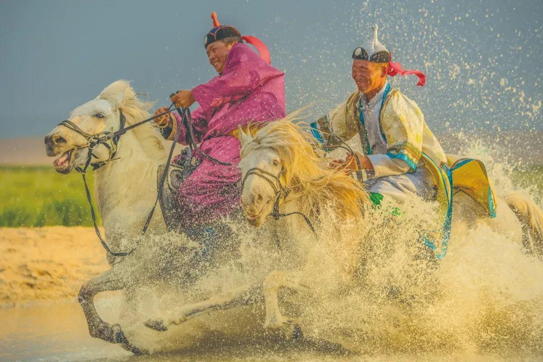 蒙古马神采 第7张 蒙古马神采 蒙古文化