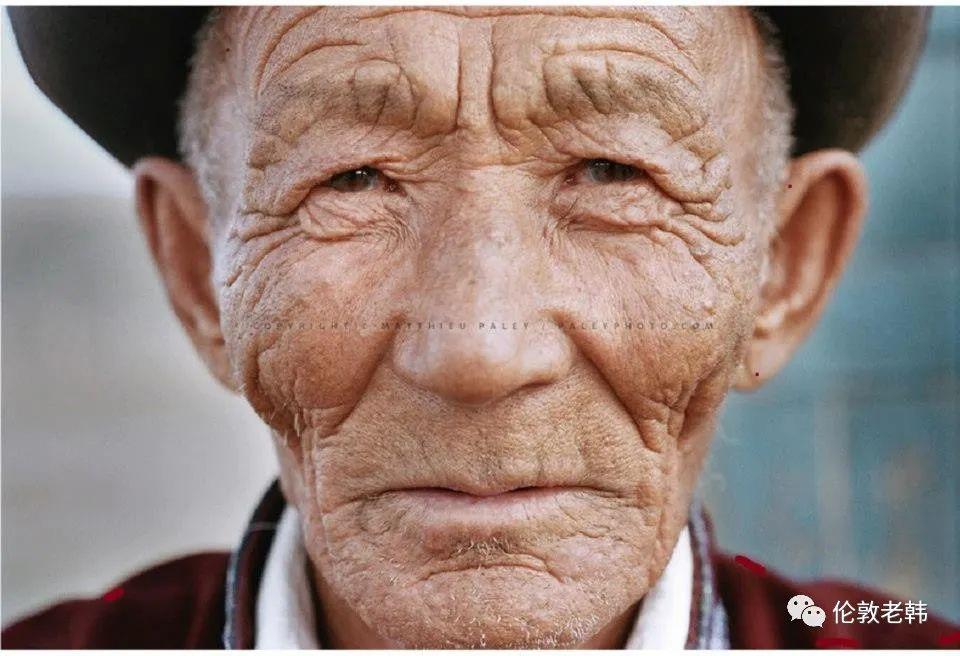 蒙古脸型和蒙古人种 第19张 蒙古脸型和蒙古人种 蒙古文化