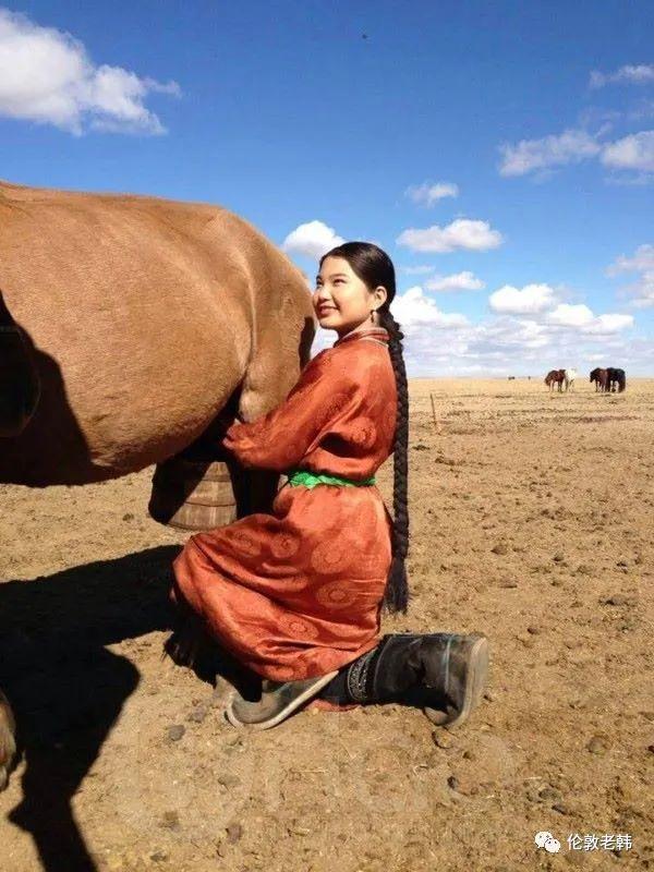蒙古脸型和蒙古人种 第31张 蒙古脸型和蒙古人种 蒙古文化