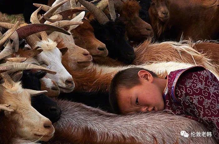 蒙古孩子 第3张