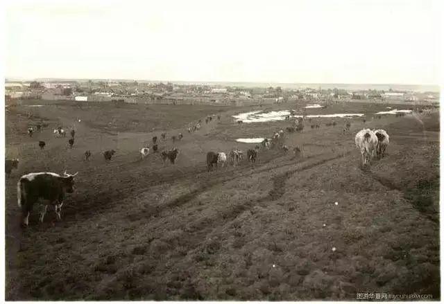 民国老照片 |1925-1935年内蒙古呼伦贝尔 第20张