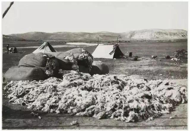 民国老照片 |1925-1935年内蒙古呼伦贝尔 第32张