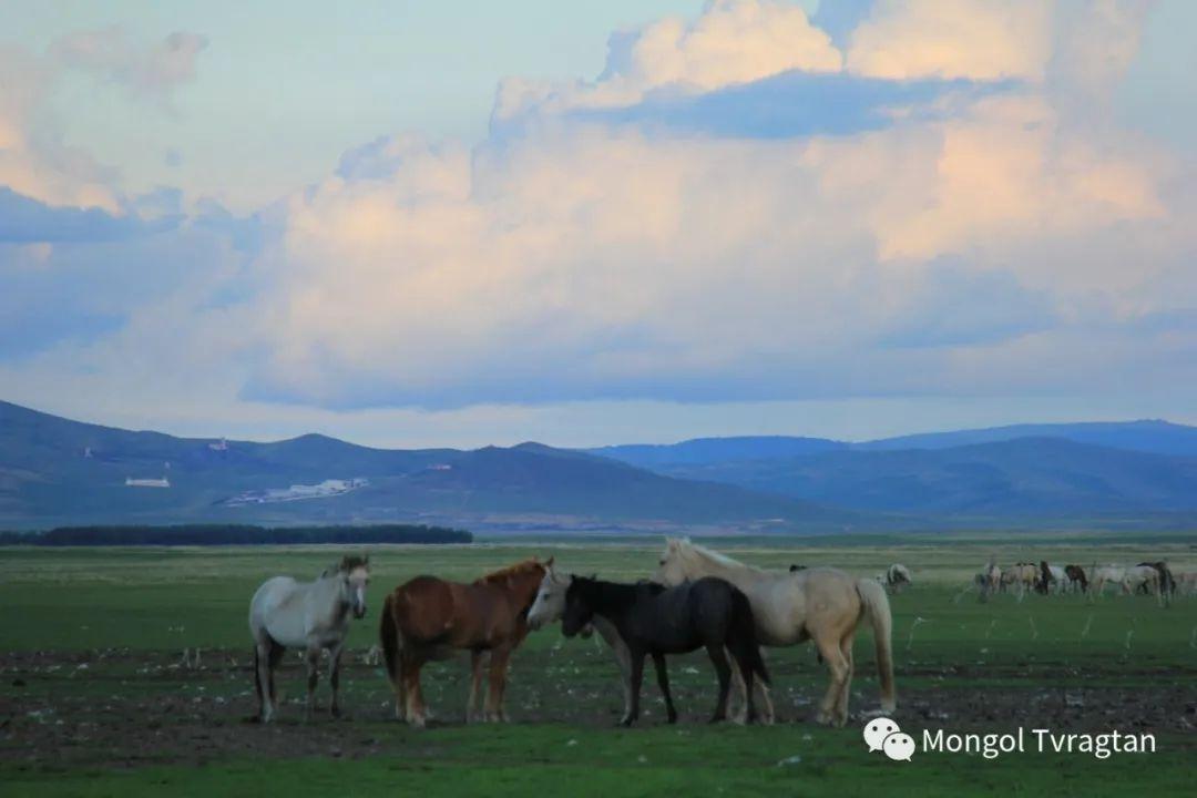 ᠮᠤᠩᠭᠤᠯ ᠵᠢᠷᠣᠭ- ᠰᠠᠷᠠᠭᠣᠯᠴᠡᠴᠡᠭ 第8张 ᠮᠤᠩᠭᠤᠯ ᠵᠢᠷᠣᠭ- ᠰᠠᠷᠠᠭᠣᠯᠴᠡᠴᠡᠭ 蒙古文化