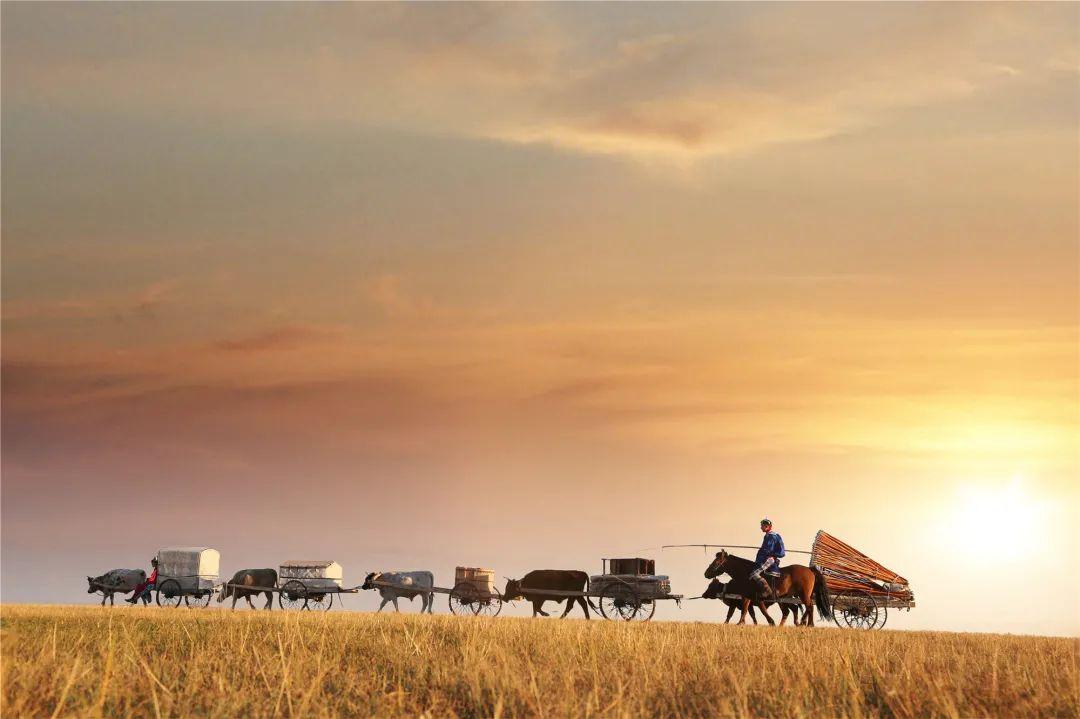 秋天的乌珠穆沁草原,太美了! 第4张 秋天的乌珠穆沁草原,太美了! 蒙古文化