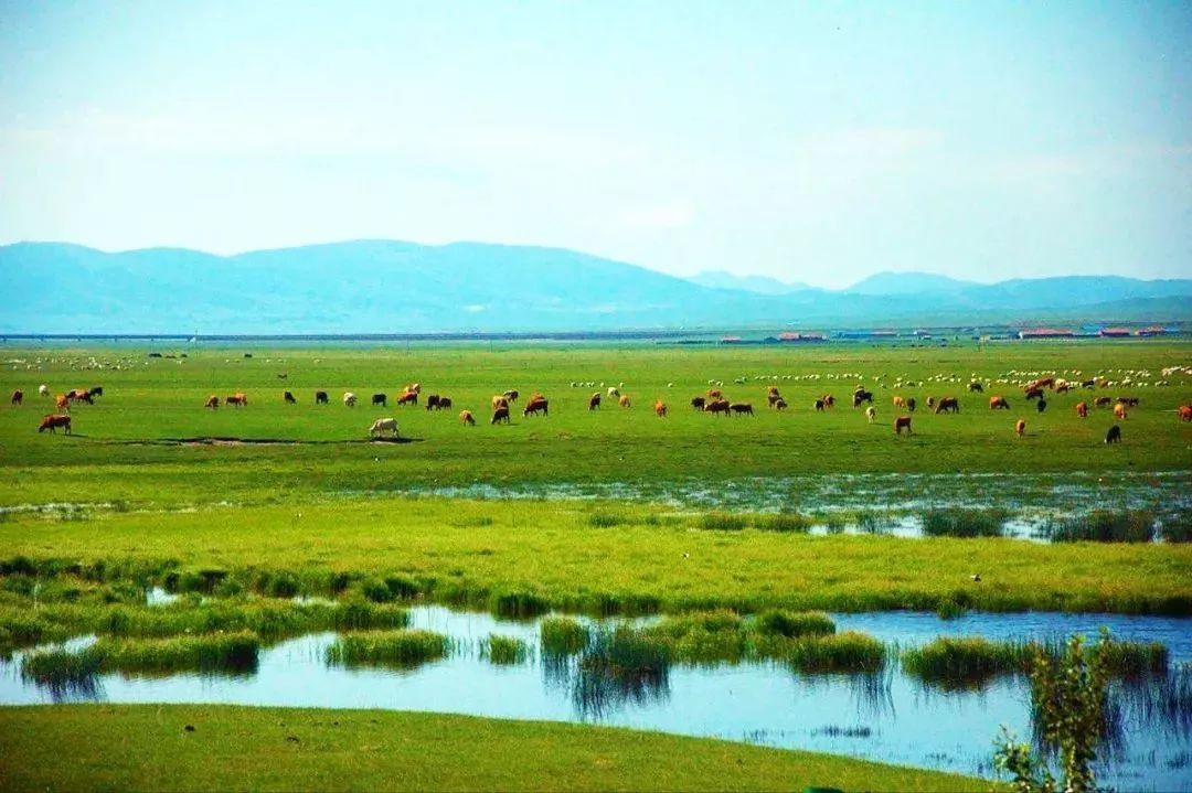 乌珠穆沁,一个美了千年的绝色草原 第2张 乌珠穆沁,一个美了千年的绝色草原 蒙古文化