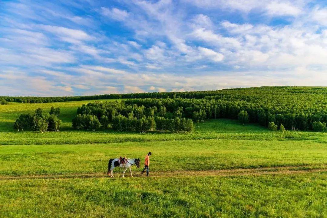 乌珠穆沁,一个美了千年的绝色草原 第8张 乌珠穆沁,一个美了千年的绝色草原 蒙古文化