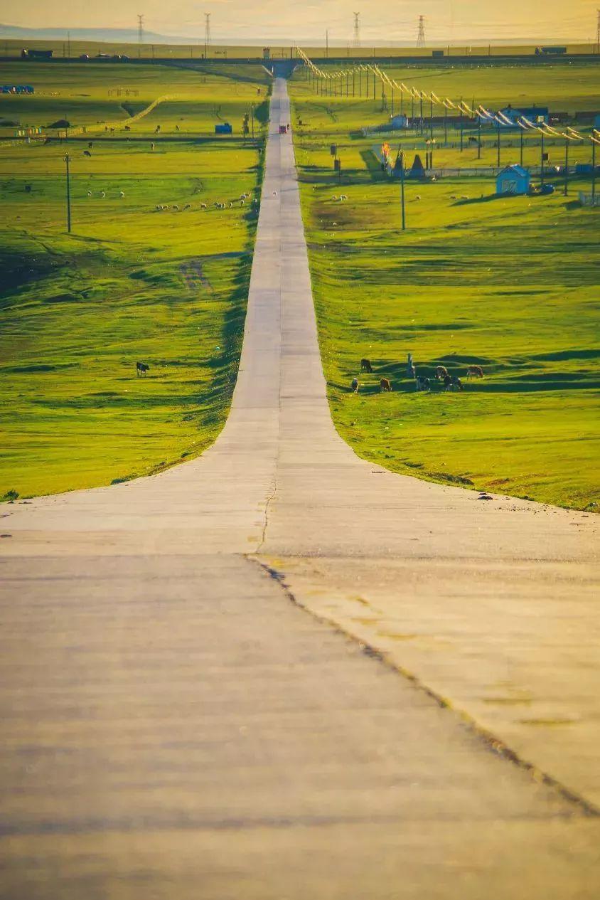 乌珠穆沁,一个美了千年的绝色草原 第15张 乌珠穆沁,一个美了千年的绝色草原 蒙古文化