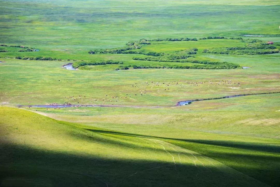乌珠穆沁,一个美了千年的绝色草原 第26张 乌珠穆沁,一个美了千年的绝色草原 蒙古文化