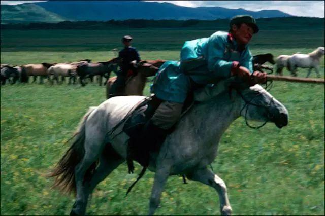 30年前的乌珠穆沁草原老照片 第13张