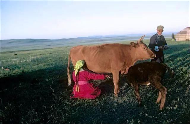 30年前的乌珠穆沁草原老照片 第17张